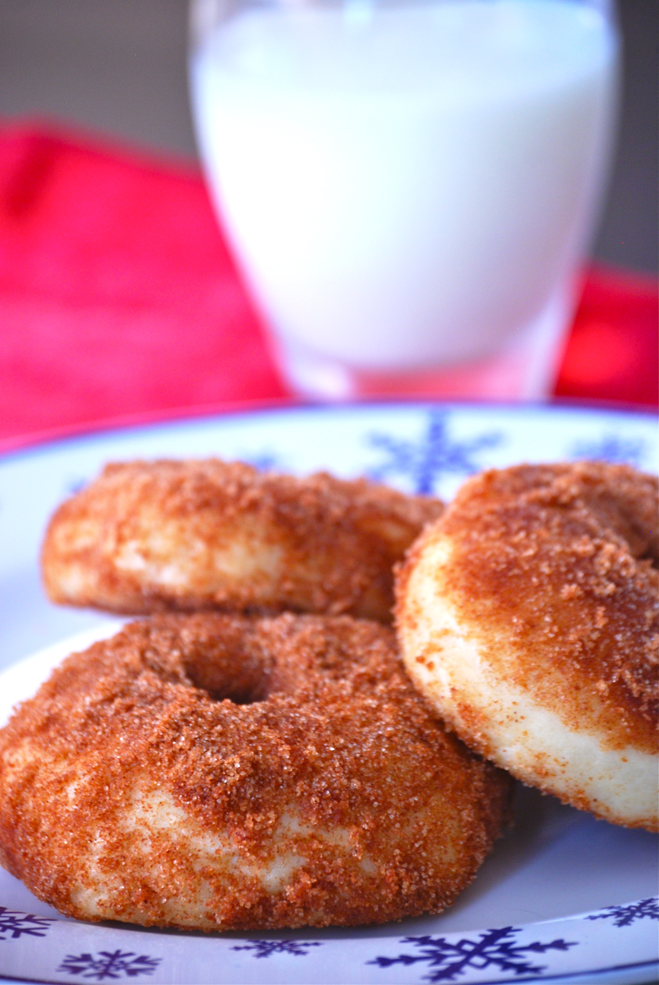 Baked Chocolate Cinnamon Doughnuts Recipe — Dishmaps