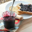 Blueberry Jam (1 of 4)