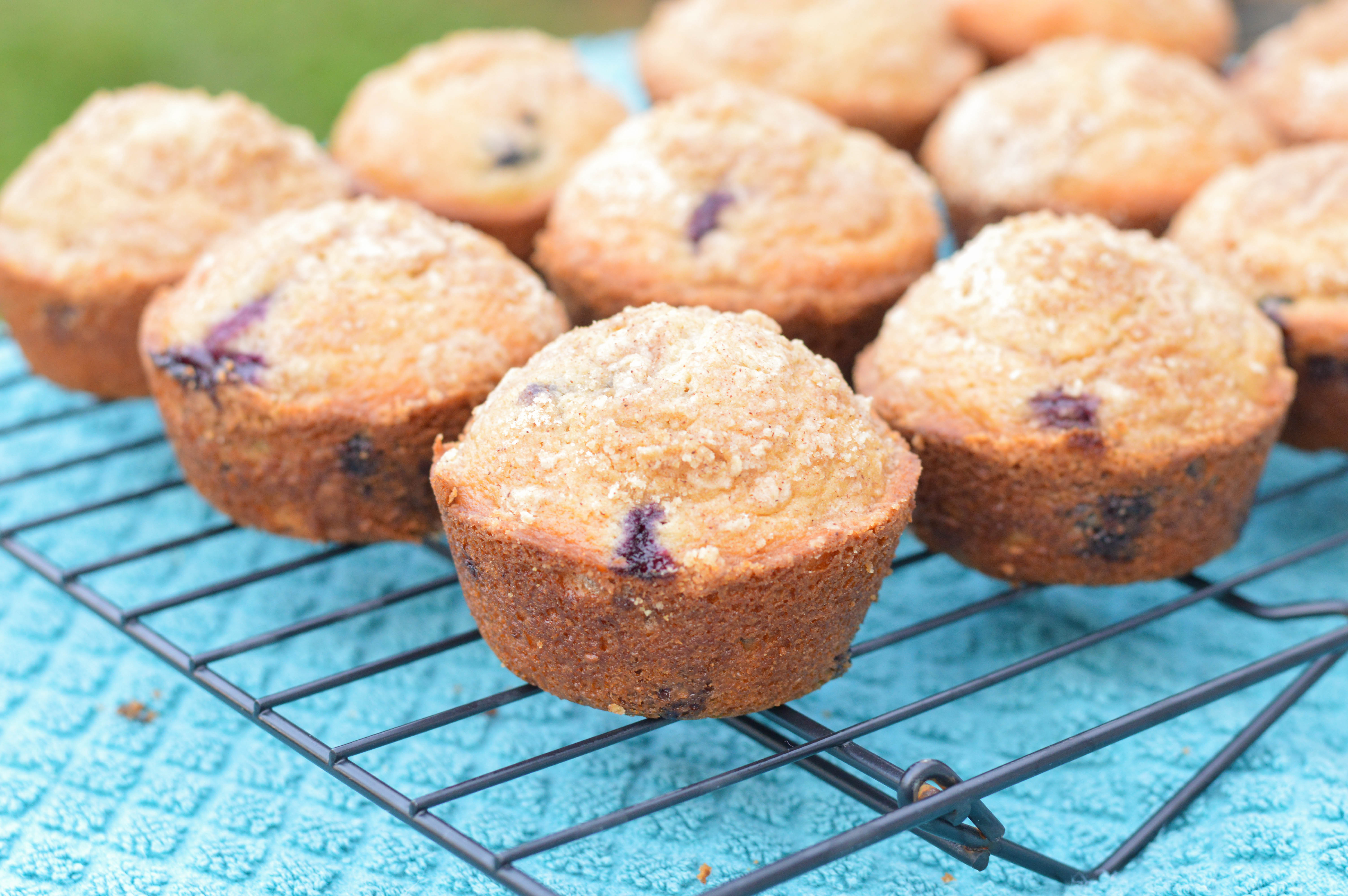 Bakery Style Blueberry Muffins - Macaroni and Cheesecake